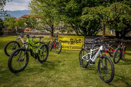 bicicletta ebike